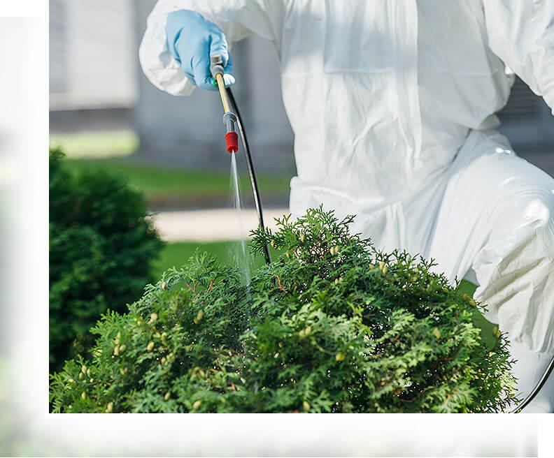 Pflanzenschutz in Gelsenkirchen